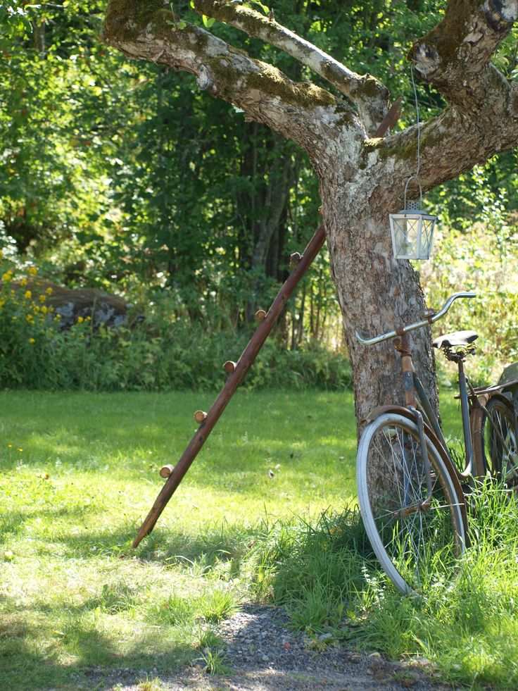 Deco in the garden - Old bike