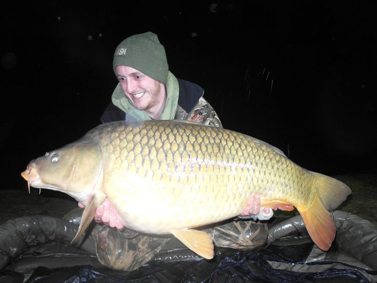 Mark caught this stunning common carp weighing 35lb 4oz on the last night of his #carpfishing holiday after targeting a new spot. The carp was caught 10'' braided rig with 2 x 20mm Nutrabait Blue Oyster boilies on 3.5oz inline lead. Mark went on to catch another 3 mirror carp in the same spot, on the same tactics during his last 24 hours at the Beausoleil Lake. www.frenchcarpandcats.com