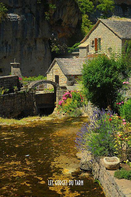 Les Gorges du Tarn, France Le gole del Tarn sono un canyon scavato dal fiume Tarn tra il Causse Méjean ed il Causse de Sauveterre. Si estendono da Quézac a Le Rozier lungo 53 km, per gran parte nel dipartimanto della Lozère ed in minima parte nell'Aveyron