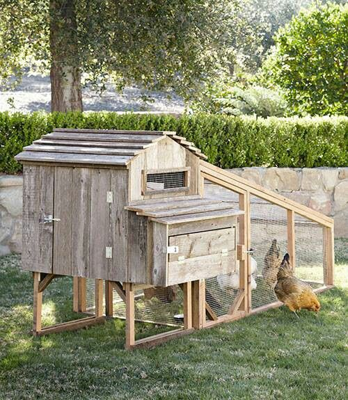 Desta learn cool chicken coop plans for Cool chicken coop plans