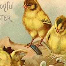 Vintage Joyful Easter Chicks!