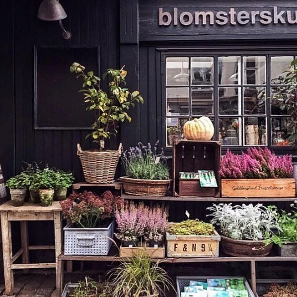Blomsterskuret, Copenhagen shopfront  @eskimo via @theprettycities a trip to this gorgeous city is long overdue @sr.78 @pixiepotalivo do you know this lovely shop? @blomsterskuret #sharingaworldofshops