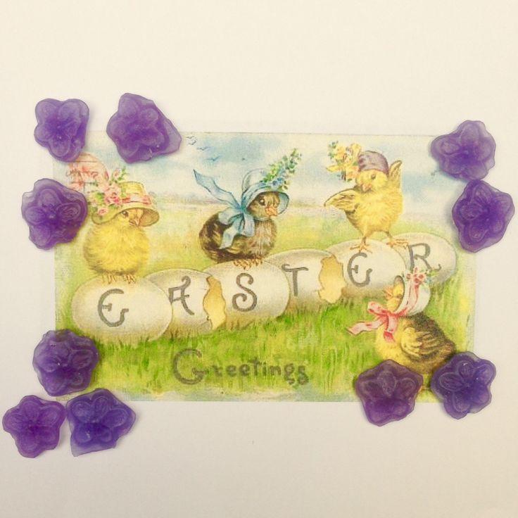 Violet candies. Pastiglie Leone