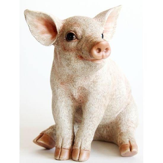 Decoratie varkens beeldje 24 cm  Beeldje zittend varkentje. Dit beeldje van een zittend varkentje is gemaakt van polystone en heeft een formaat van ongeveer 23 x 17 x 24 cm.  EUR 29.95  Meer informatie