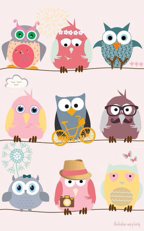 Colorful owlsss