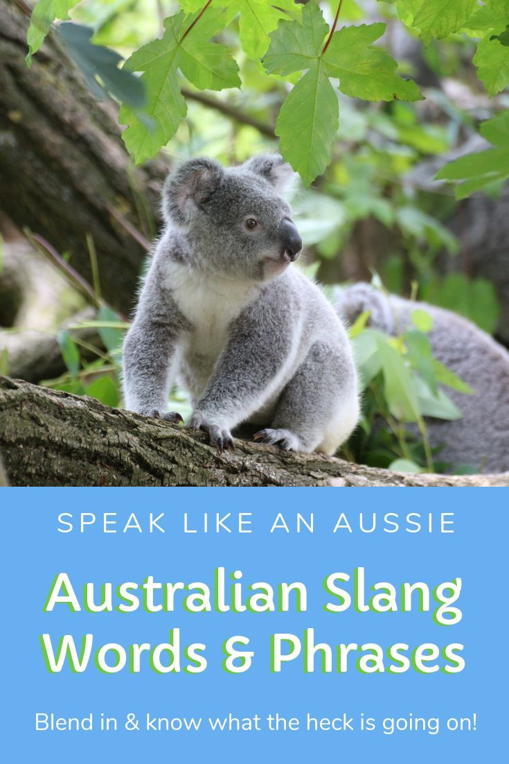 G Day Mate Crikey Learn Loads Of Slang Words And Phrases Heard In Australia When You Travel To Austr With Images Traveling By Yourself Australia Travel Australian Slang