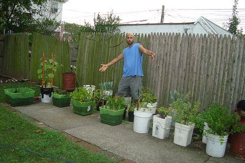 43 best Backyard Urban Vegetable Garden Ideas images on Pinterest