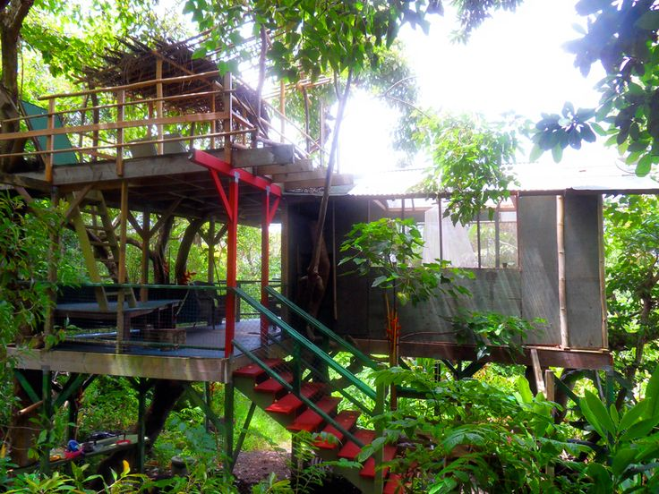 Tree houses in Hawaii - why not!