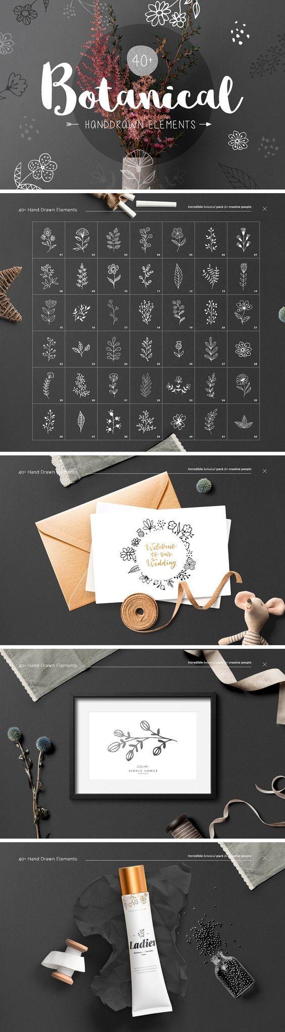 40+ Botanical Hand Drawn Elements by William Hansen on @creativemarket