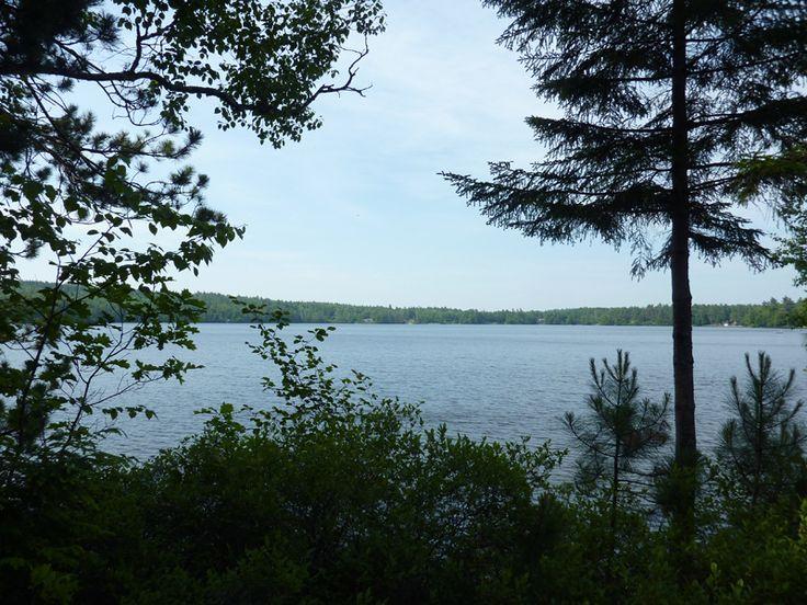 Lake Sunapee | Little Lake Sunapee, NH | Paul McInnis Auctioneer