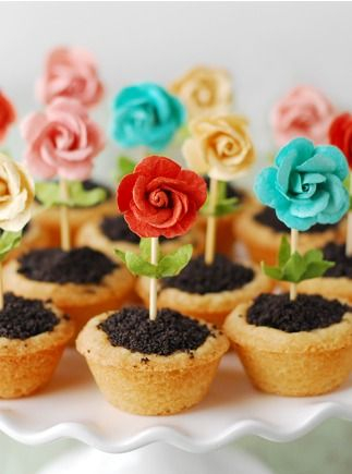 I have always wanted to make cupcakes in to a realistic theme. I actually never thought of making flower pots, but it actually seems like a good idea. It would also help the definition of Earth Day and what it surrounds.
