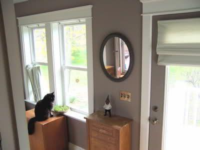 color I am using in living room Benjamin Moore AF-155 Weimeraner