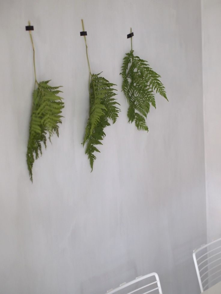 Plant decoration //ruokailutila3
