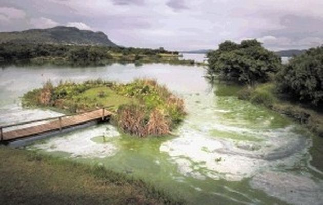 "In this article, it speaks of people who are being affecting by large sewage pits all across South Africa, and especially the children who are being exposed to a large amount of E-coli. It leaves the citizens of South Africa feeling very ill. ""It is always the poorest of the poor who are the worst affected."" Those who are responsible are making an effort to mend the problem, and to conserve the beauty of the land, as well as making it safe for everyone to enjoy."