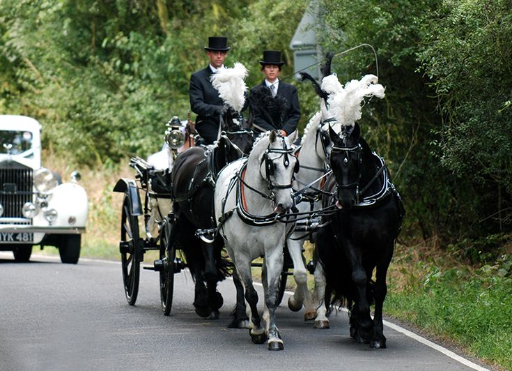 Looking for horse drawn wedding carriages in Hertfordshire Essex Kent Suffolk London? We offer carriages for a wedding with the ultimate romantic experience.