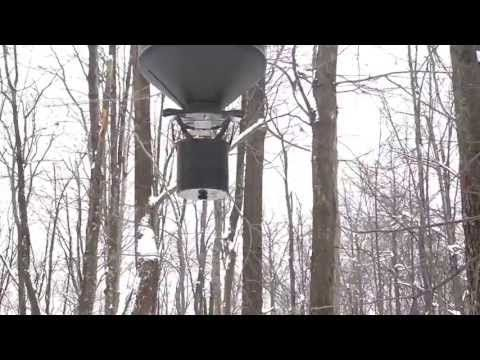 Moultrie Hanging Deer Feeder 15 gallon - http://deerfeeders.co/moultrie-hanging-deer-feeder-15-gallon/