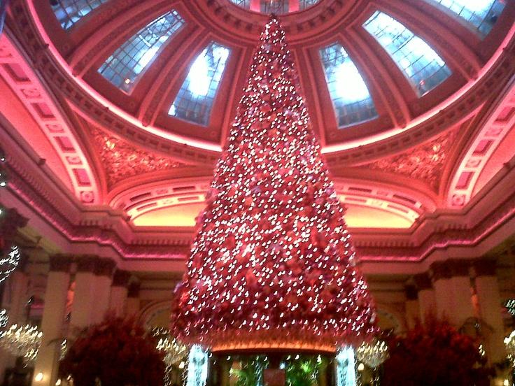 The Dome Christmas Tree, Edinburgh Scotland.