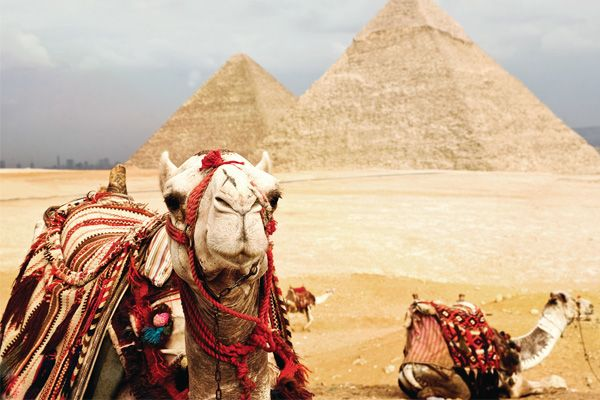 Middle East & North Africa Tours | Egypt Trips | Morocco Tours | Israel Tours | Topdeck Travel