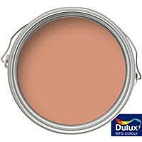 Dulux Weathershield Toasted Terracotta - Smooth Masonry Paint - 5L