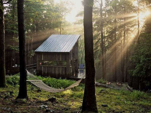 Forests, Spaces, Small Cabin, Tiny House, Dreams, Little Cabin, Hammocks, Upstate New York, Places