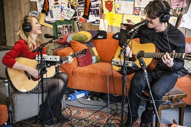 The common linnets. Day 7