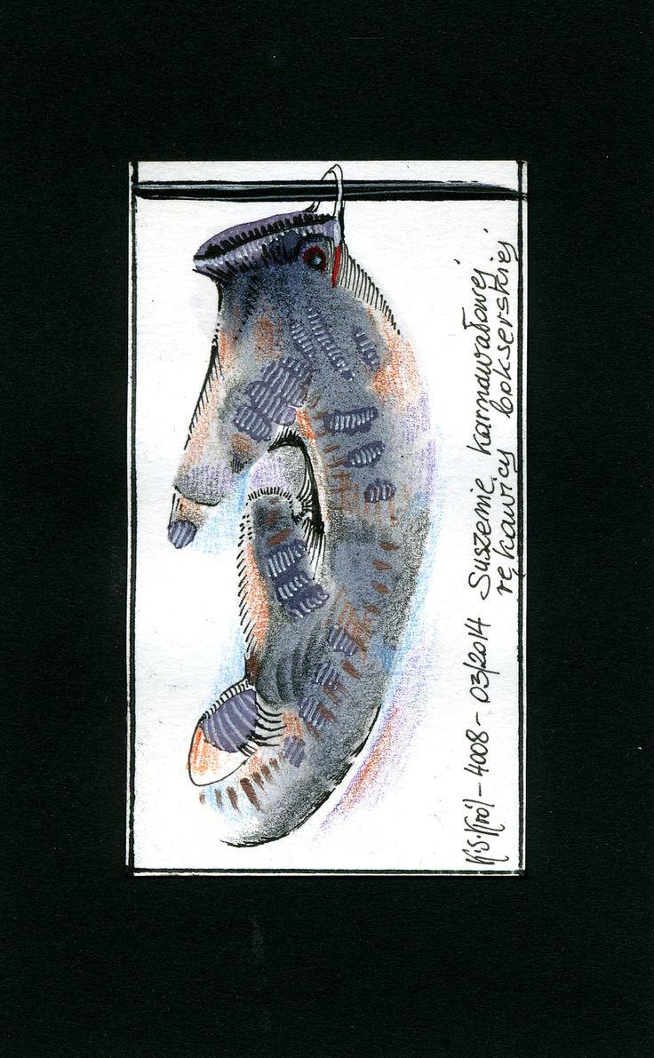 Suszenie karnawałowej rękawicy bokserskiej I Drying of a carnival boxing glove.