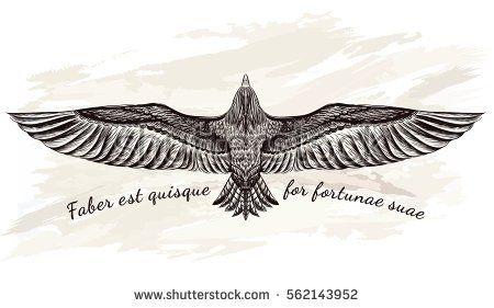 Detailed hand drawn eagle for tattoo art . Boho chic.Vector illustration. Flight…