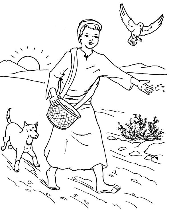 Parable of the Sower, : Farmer Scattered Seed Among Thorns