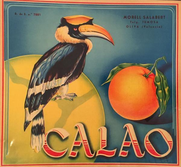 1930-40 Original Vintage Spanish Label, Toucan
