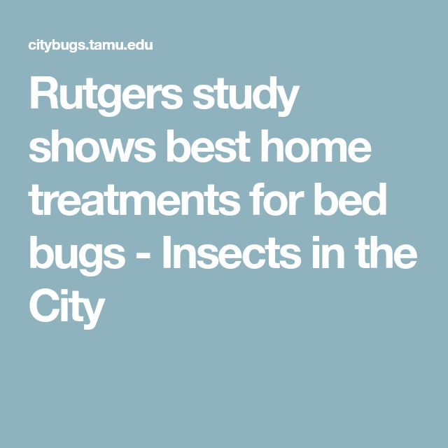 Rutgers study shows best home treatments for bed bugs - Insects in the City