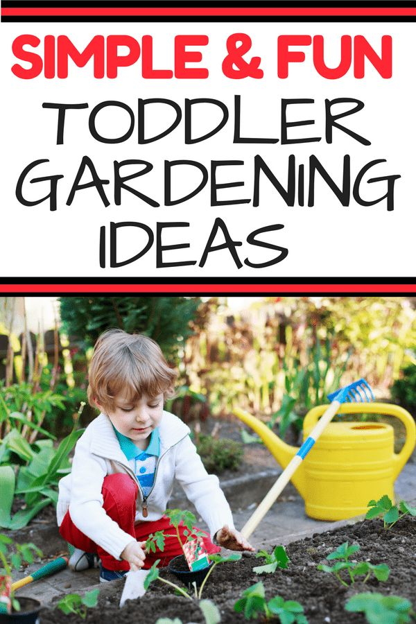 Toddler Gardening Guide: Gardening with your toddler is the perfect spring or summer activity. Encourage fine and gross motor skills while playing in the dirt! No lesson plans required for this fun way to learn. Encourage your toddler's development through gardening.