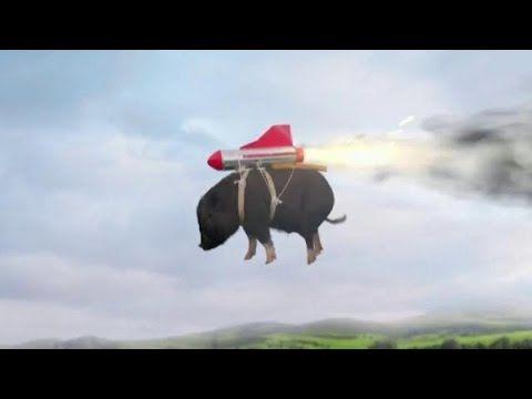 Doritos Commercial 2015 Crash the Super Bowl, When Pigs Fly http://1502983.talkfusion.com/en/