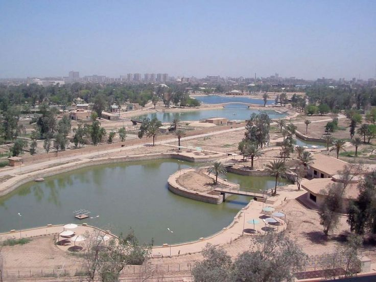 17 Best Images About Baghdad Zoo On Pinterest Cardboard