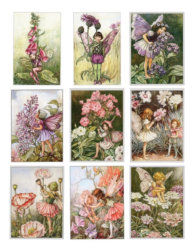 Nursery Artwork: Flower Fairies by Cecily Mary Barker