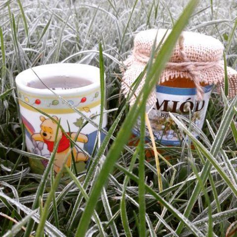 Miód borówkowy, herbata z miodem @mybeepl