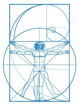 El Vitruvian y la proporción áurea
