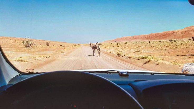 Instagrammer tjoolaard verkende Oman met een huurauto. Deel ook je roadtrip plezier en plaats de hashtag #MetEenHuurautoZieJeMeer bij je foto's op social media.