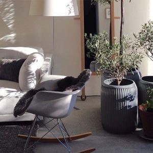 Olsson & Gerthel: Möbler, inredning och design online