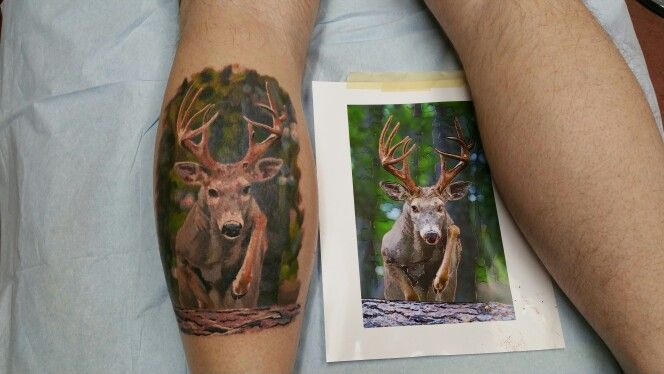 whitetail buck tattoo done at inkaholics in north east maryland photo realism portrait wildlife. Black Bedroom Furniture Sets. Home Design Ideas