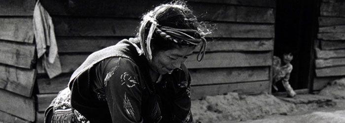 Vea más sobre los Mapuches en el sitio Chile Precolombino!