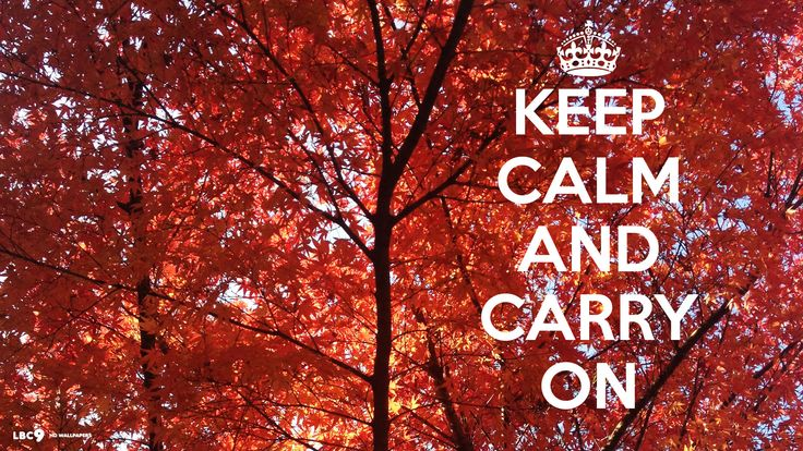 Keep Calm And Dream On Wallpaper 1366x768 Px Free Download