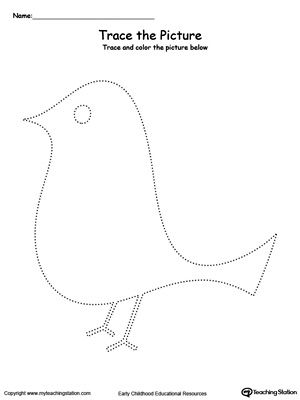 **FREE** Bird Picture Tracing Worksheet. Reinforce fine motor skills in your preschool child by tracing lines and coloring the picture.