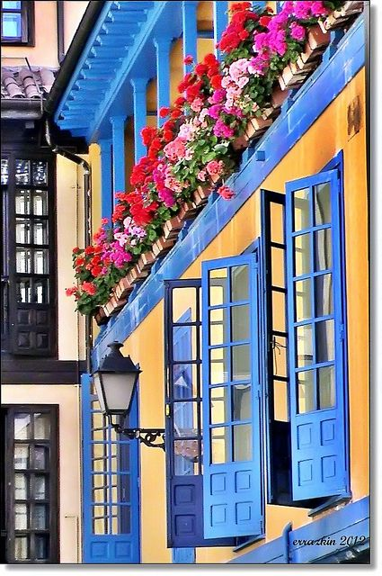 Colour in Oviedo, Asturias, Spain <3