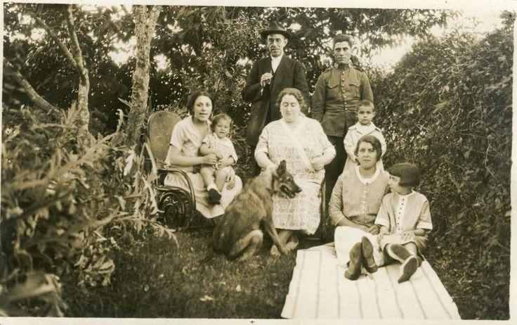 Iberian Wolfdog 1902. Comillas Spain. Perro lobo ibérico
