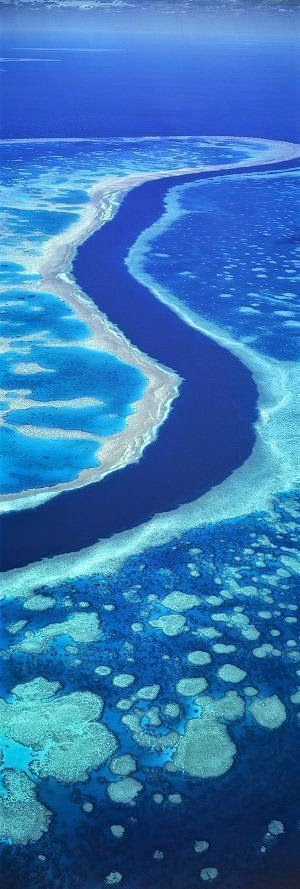 Great Barrier Reef, Australia - Explore the World with Travel Nerd Nici, one Country at a Time. http://TravelNerdNici.com #site:placestovisitinaustralia.website