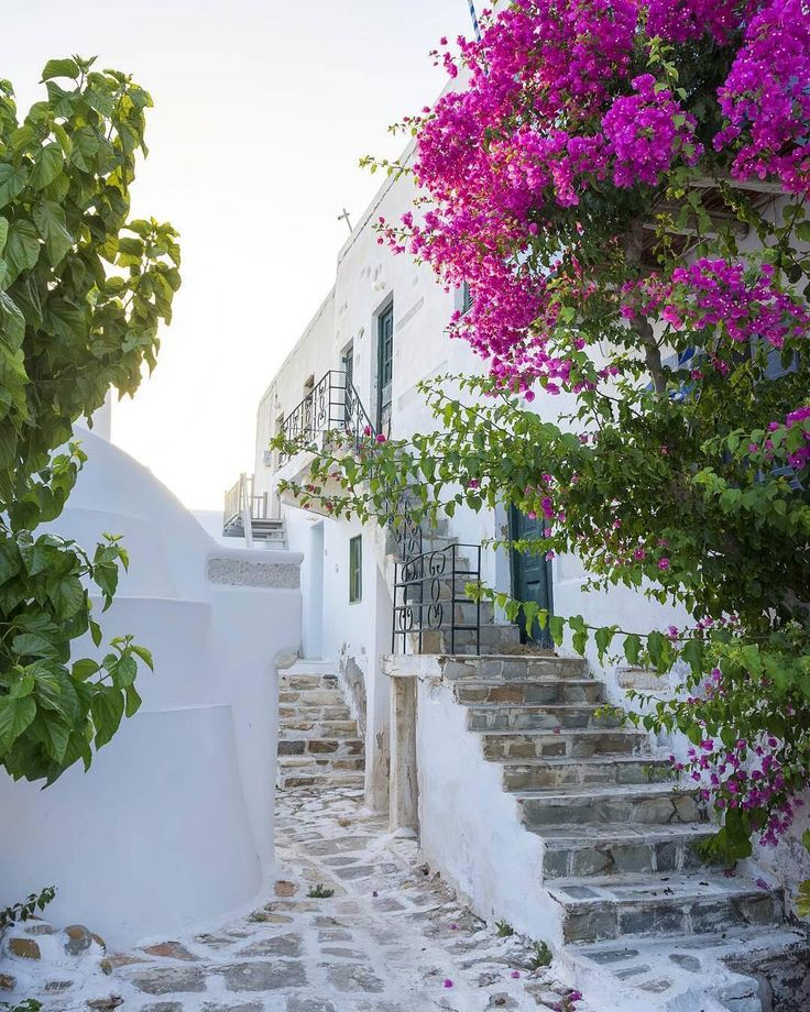Colorful alley in 📍Antiparos island (Αντίπαρος)