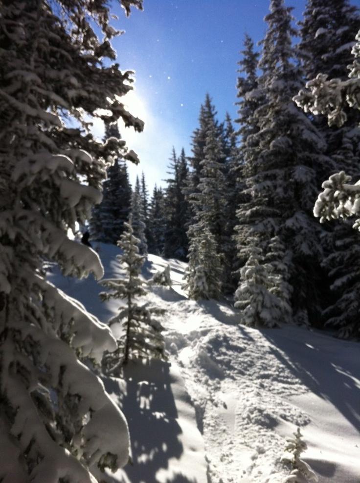 20 best Ski Chalet Rental images on Pinterest   Chalets, Ski chalet ...