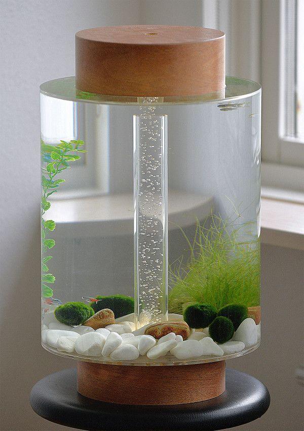 Home Aquarium Gets A Scandinavian Redesign