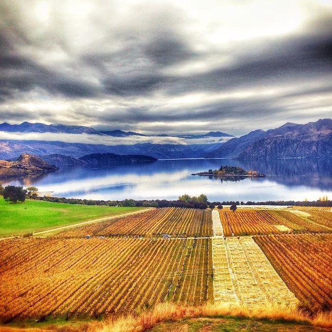 Wanaka, New Zealand - photo by @Liz Carlson