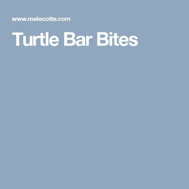 Turtle Bar Bites